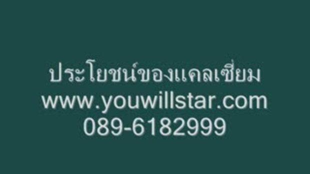 www.youwillstar.com