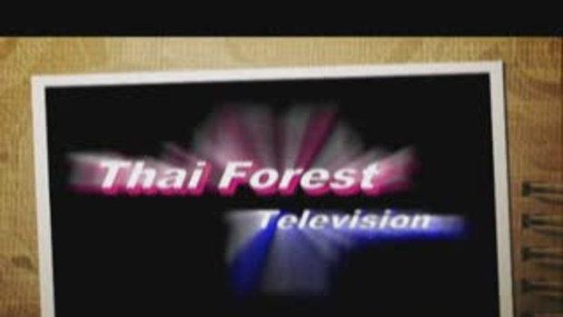 ดอกฟ้า ในป่าใหญ่ ตอน นางอั้วถิ่นไทย ดอกฟ้าผู้ใกล้ว