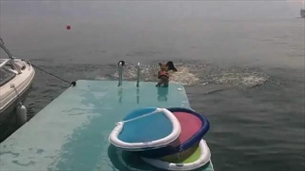 แกล้งสุนัขกระโดดน้ำ!!