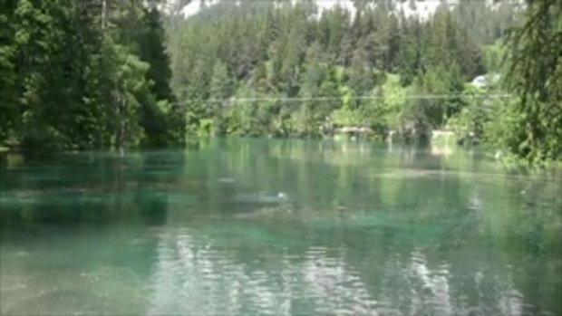 สวนสาธารณะใต้น้ำของจริง แห่งเดียวของโลก