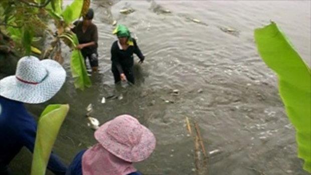 5ลุงสันติบ่อปลาธรรมชาติ