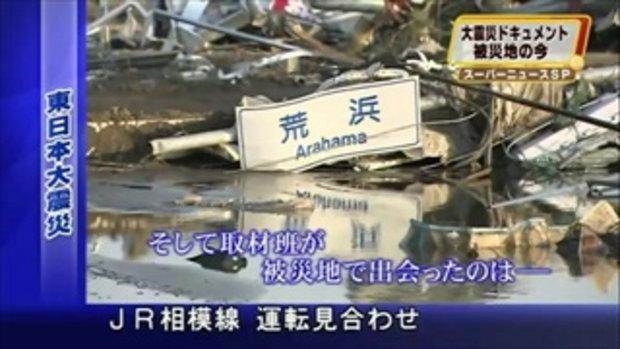 น้องหมาดูแลเพื่อน ที่บาดเจ็บจากสึนามิที่ญี่ปุ่น