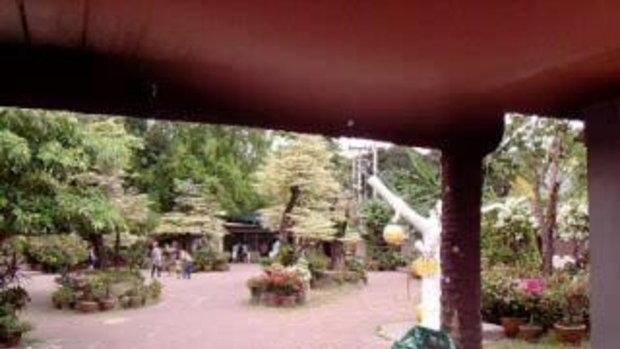 เทื่ยวสวนเสือศรีราชา  2