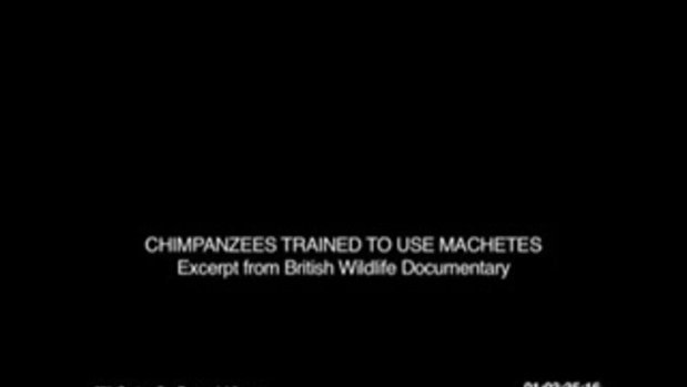 Rise of the Planet of the Apes - Machete Clip (ซับไทย)