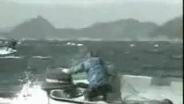 สุดระทึก! ปลาวาฬเข้าโจมตี เรือประมงกลางทะเล