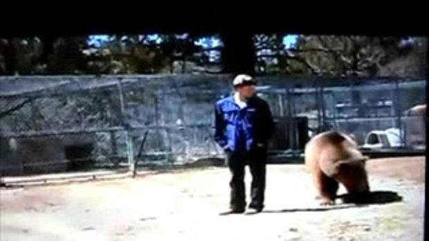 พลาด! หมียักษ์กัดคอ สะบัดจนกระเด็น