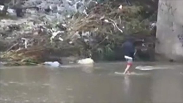 พี่แกสุดเจ๋ง!จับปลาด้วยก้อนหิน