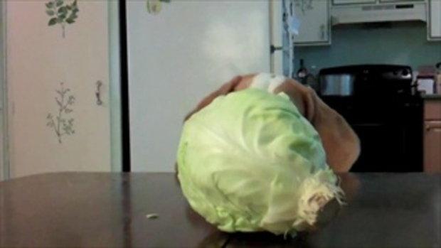 น้องหมาแสนรู้ อยากกินผัก