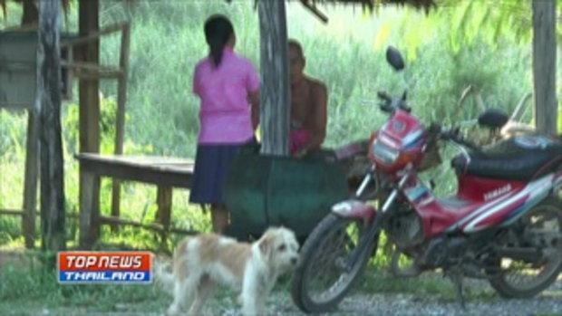 ชาวบ้านผวาหนัก มีคนนำสุนัขมาปล่อยทิ้งไว้ในหมู่บ้านจหลายสิบตัว