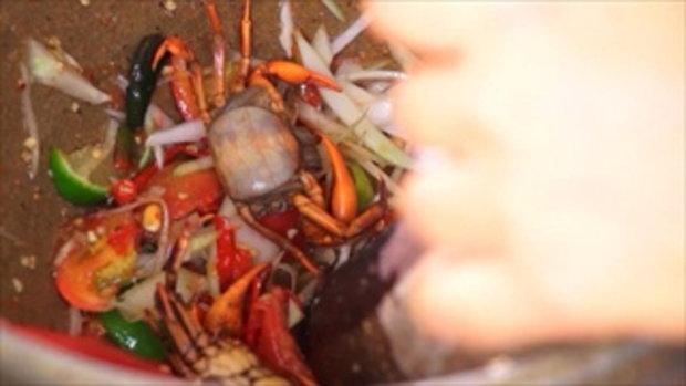 กบนอกกะลา : ส้มตำปาปาย่า ป็อกป็อก (2) ช่วงที่ 4/4 (22 ก.ย.59)