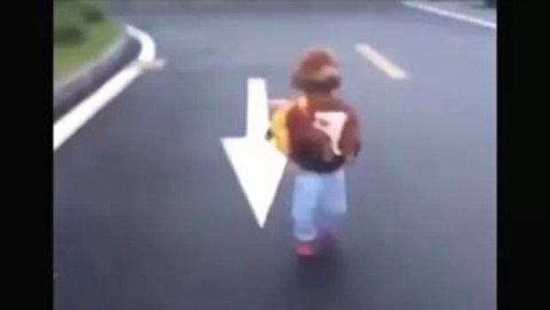 น่ารักสุดพลัง ตูบพุดเดิ้ลแต่งชุดเด็ก เดิน 2 ขาทัวร์ 2 กม. คนตามถ่ายรูปยังกับดารา