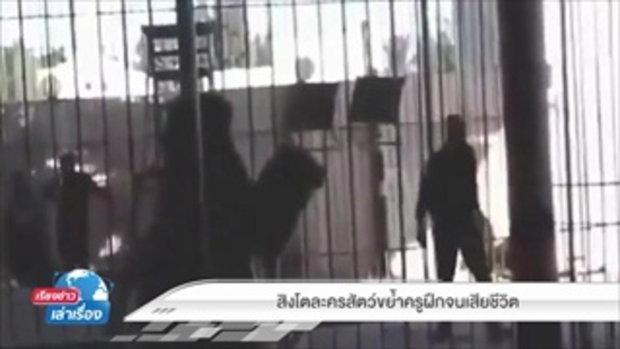 สิงโตละครสัตว์ขย้ำครูฝึกเสียชีวิต ในเรียงข่าวเล่าเรื่อง 2 ธันวาคม 2559