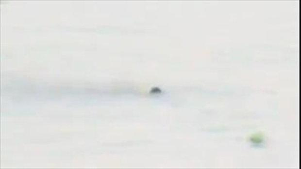 ฮีโร่พันธุ์แท้สมุทรสาคร ลุงขวัญตาว่ายน้ำสุดแรงเกิด ช่วยเหยื่อจมน้ำกลางแม่น้ำท่าจีน