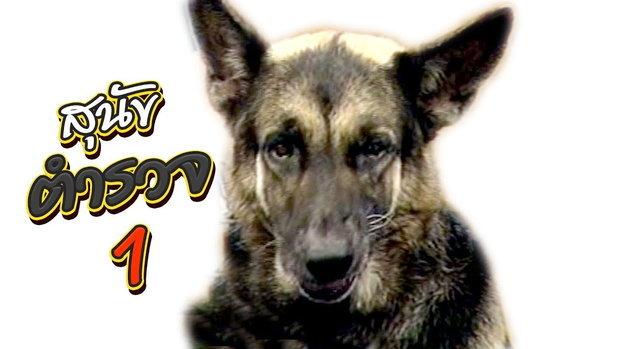เจาะใจ ออนไลน์ : In the past | สุนัขตำรวจ Ep.1 [12 มิ.ย. 60] Full HD