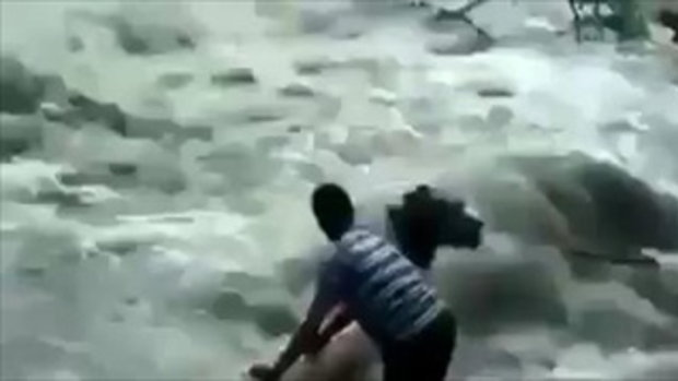 นับถือน้ำใจจริงๆ! เสี่ยงชีวิตช่วยลา ในน้ำที่ไหลเชี่ยว