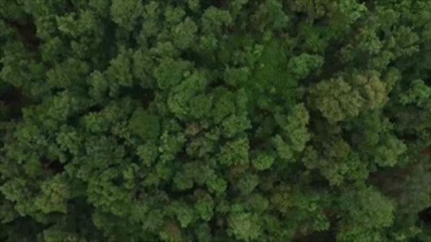 คนมันส์พันธุ์อาสา : ภารกิจสร้างโป่งเทียมและบำรุงแหล่งน้ำเพื่อสัตว์ป่า ช่วงที่ 1/4 (30 ก.ค.60)