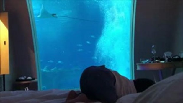 บรรยากาศสุดยอด เป้ยพาน้องโปรดพักโรงแรมใต้น้ำ
