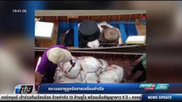 กระเบนราหูถูกจับขายเกลื่อนท่าเรือ - เข้มข่าวค่ำ