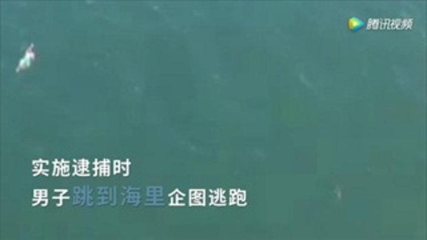 หนุ่มสหรัฐฯ กระโดดลงทะเลหนีตำรวจ แทบช็อกเจอฉลามว่ายน้ำตาม!