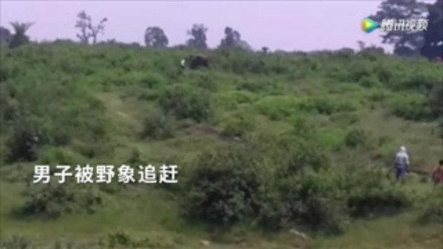 ชายขี้เมาชาวอินเดียพยายามเซลฟี่คู่กับช้างป่า เจอไล่กระทืบดับ