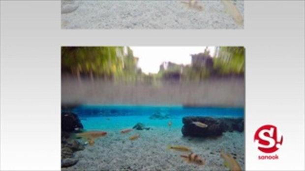 ป่าต้นน้ำบ้านน้ำราด บ่อน้ำผุดใสที่สุดในประเทศไทย สิ่งมหัศจรรย์จากธรรมชาติ จ สุราษฏร์ธานี