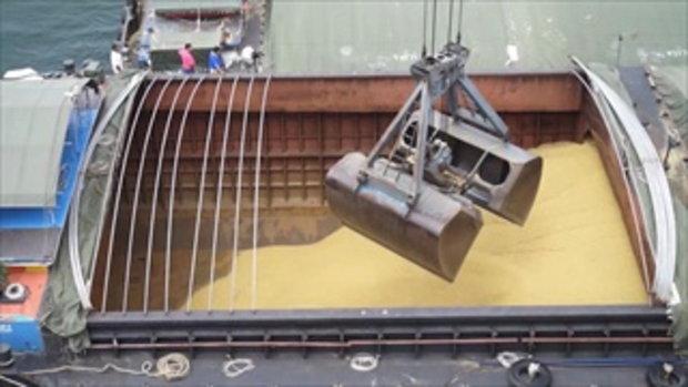 กบนอกกะลา : กว่าจะเป็นน้ำมันถั่วเหลือง ช่วงที่ 1/4 (2 มี.ค.60)