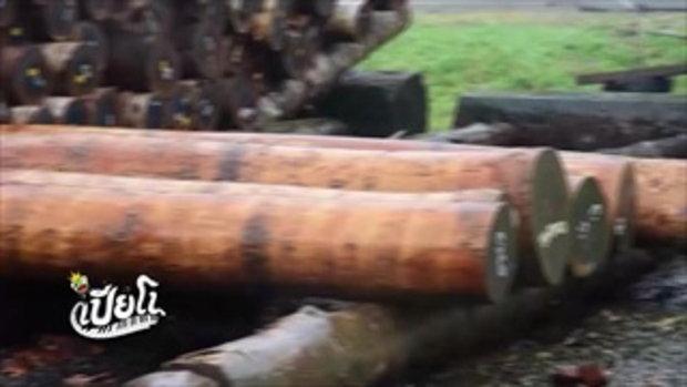 คลิปอ๊อด อ๊อด : ไม้ที่ทำเปียโนมีกี่ชนิด