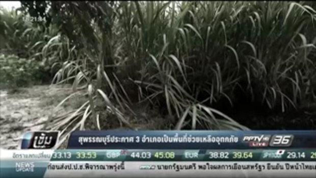 สุพรรณบุรีประกาศ 3 อำเภอเป็นพื้นที่ช่วยเหลืออุทกภัย - เข้มข่าวค่ำ