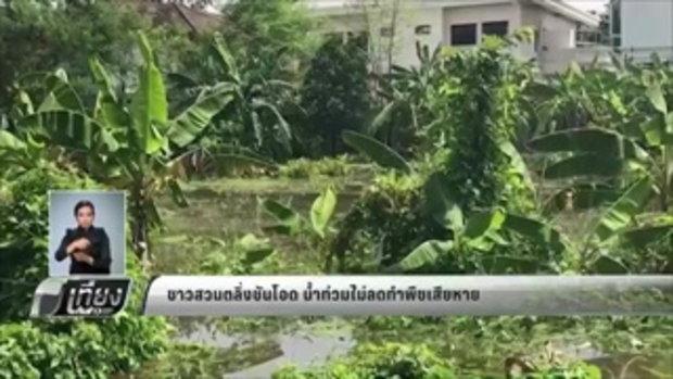 ชาวสวนตลิ่งชันโอด น้ำท่วมไม่ลดทำพืชเสียหาย - เที่ยงทันข่าว