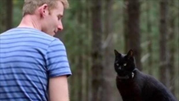 เปิดเรื่องราวชาวหนุ่มยอมลาออกจากงาน เพื่อพาแมวไปเที่ยวทั่วออสเตรเลีย