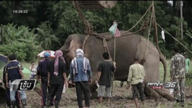 """ปฏิบัติการช่วยชีวิต """"ช้างป่า"""" จมน้ำคลองชมพู ย้ายขึ้นรถบรรทุกไปลำปางสำเร็จ - เข้มข่าวค่ำ"""