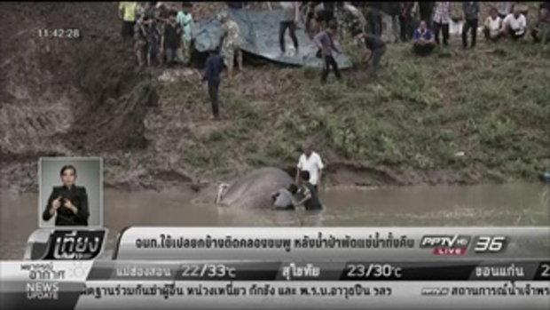 จนท.ใช้เปลยกช้างติดคลองชมพู หลังน้ำป่าพัดแช่น้ำทั้งคืน - เที่ยงทันข่าว