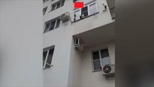 โชคดีจริงๆ แมวเล่นราวตากผ้าริมหน้าต่างจวนตก ฮีโร่หนุ่มไม่รอช้า ถือกระเป๋ารอรับทันที