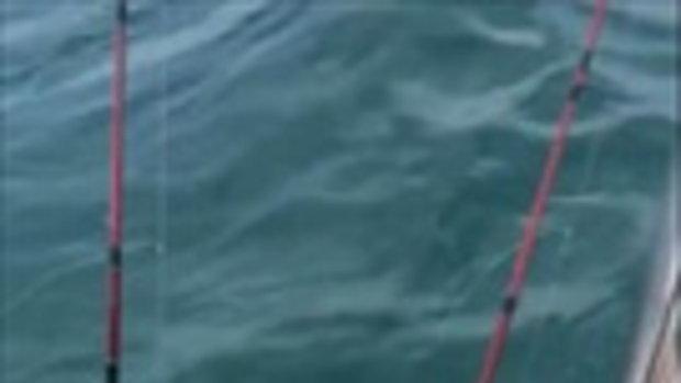นาทีชีวิต สาวโพสต์คลิปวินาทีที่ เรือนำเที่ยวล่มกลางทะเลพัทยา น้ำทะลักเข้าเรือจม