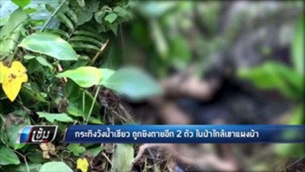 กระทิงวังน้ำเขียว ถูกยิงตายอีก 2 ตัว ในป่าใกล้เขาแผงม้า - เข้มข่าวค่ำ