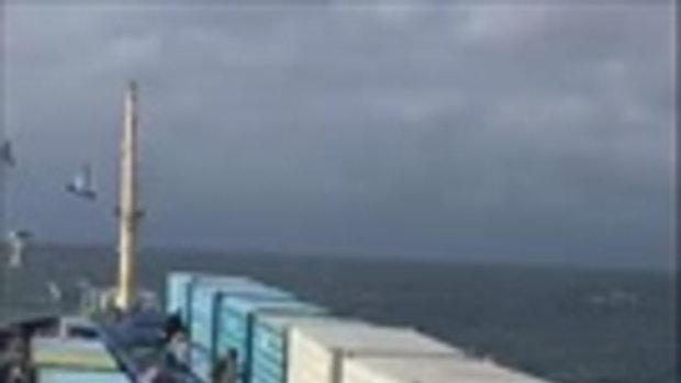 มืดฟ้ามัวดินเลยทีเดียว ชมนาทีกองทัพเรือปล่อยนกออกจากตู้คอนเทนเนอร์กลางทะเล