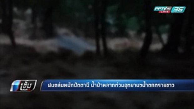 ฝนถล่มหนักปัตานี น้ำป่าหลากท่วมอุทยานฯน้ำตกทรายขาว - เข้มข่าวค่ำ