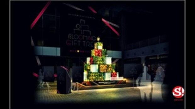 """""""Blooming Gift Tree"""" ต้นคริสต์มาสที่เปลี่ยนสีตามการแสดงออกทางสีหน้า!"""