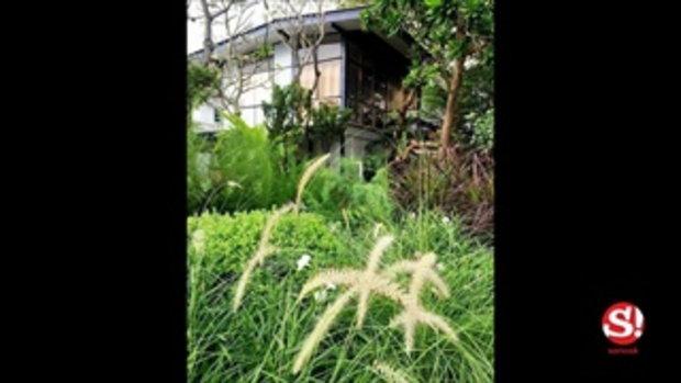 สวนในบ้าน ท็อป ดารณีนุช มุมมองจากห้องนอน สวยงามร่มรื่น