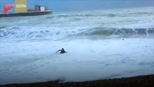 ลุ้นระทึก! สาวเสี่ยงชีวิตฝ่าคลื่นดุ ช่วยสุนัขน้อยตกทะเล