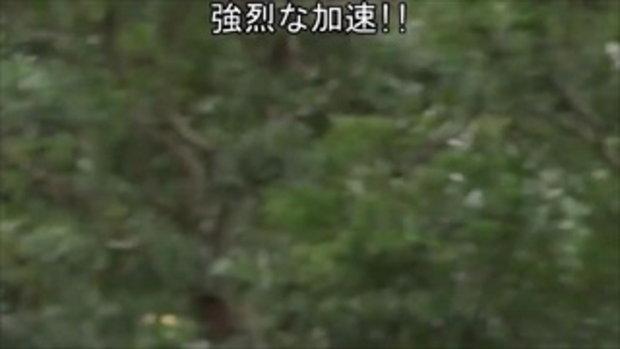 ดูรถที่ตามจับด้วย แชร์สนั่นคลิปตำรวจญี่ปุ่นปั่นจักรยานตามจับรถหรูที่ขับผิดกฎจราจร