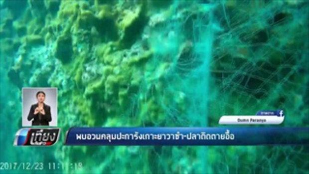 พบอวนคลุมปะการังเกาะยาวชำ-ปลาติดตายอื้อ - เที่ยงทันข่าว