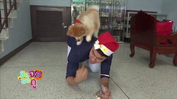 บิ๊กเอ็ม กฤตฤทธิ์ เผยความผูกพันกับสุนัขตัวโปรด ต้อนรับปีจอ