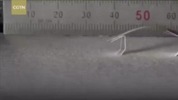 เกาหลีใต้โชว์หุ่นยนต์คลานกระดึ๊บ อาศัยพลังงานจากความชื้น