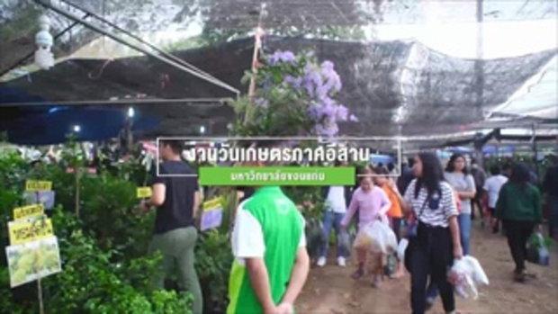 กบนอกกะลา : SIAM BERRY จี๊ดจ๊าดทั่วไทย (2) ช่วงที่ 1/4 (22 ก.พ.61)