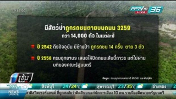 3259 ถนนผ่านป่า - เข้มข่าวค่ำ