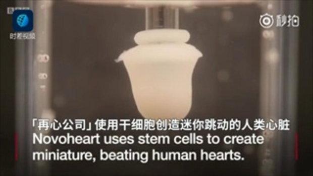 """มหาวิทยาลัยฮ่องกงผลิต """"หัวใจเทียม"""" สำหรับทดสอบยาสำเร็จเป็นที่แรกของโลก"""