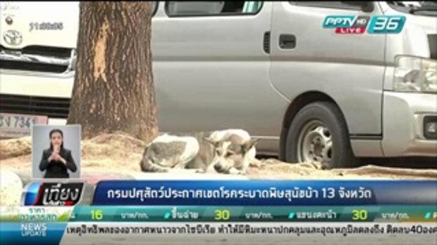 กรมปศุสัตว์ประกาศเขตโรคพิษสุนัขบ้าระบาด 13 จังหวัด - เที่ยงทันข่าว
