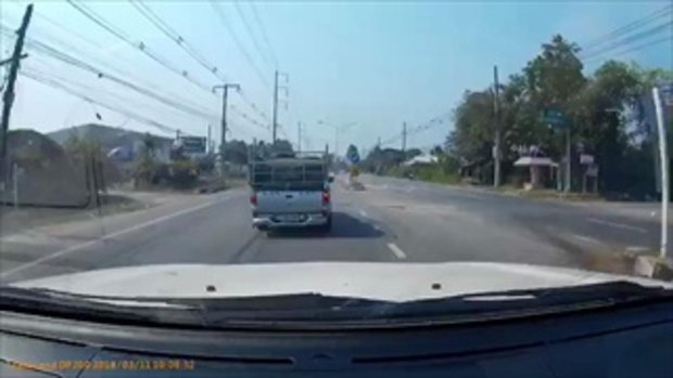 หวาดเสียว! นาทีรถชนวัว คนขับร้องลั่น ภาพติดตาเต็มๆ เตือนอุทาหรณ์คนเลี้ยงวัว