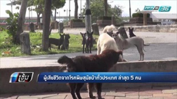 ผู้เสียชีวิตจากโรคพิษสุนัขบ้าทั่วประเทศ ล่าสุด 5 คน - เข้มข่าวค่ำ